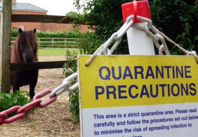 STUDENTS CONCERNED OVER LOCAL OUTBREAK OF EQUINE DISEASE