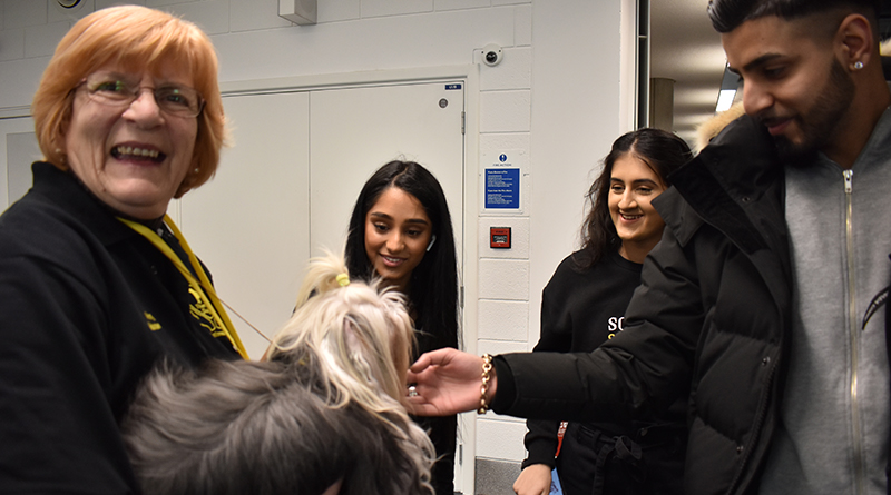 Phoebe (and her owner Kathy) meet students in Teesside University's library