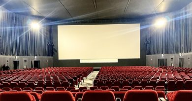The Pala Bienalle Cinema screen
